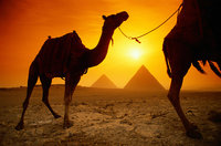Click image for larger version  Name:Egypt.jpg Views:45 Size:73.6 KB ID:1766180