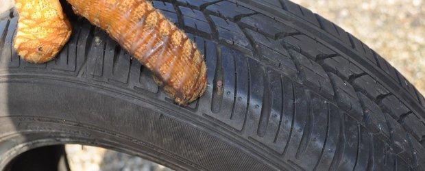 Tot ce trebuie sa stii despre anvelopele second-hand