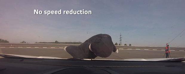 Ultimul model testat de Euro NCAP. A primit cinci stele chiar daca a luat un 'pieton' pe capota