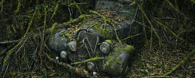 Undeva in Franta, natura si-a intrat in drepturi si a 'mancat' masinile