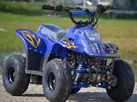 UNIC Dealer ATV HSUN Big Foot 125cc Modelul S RG7