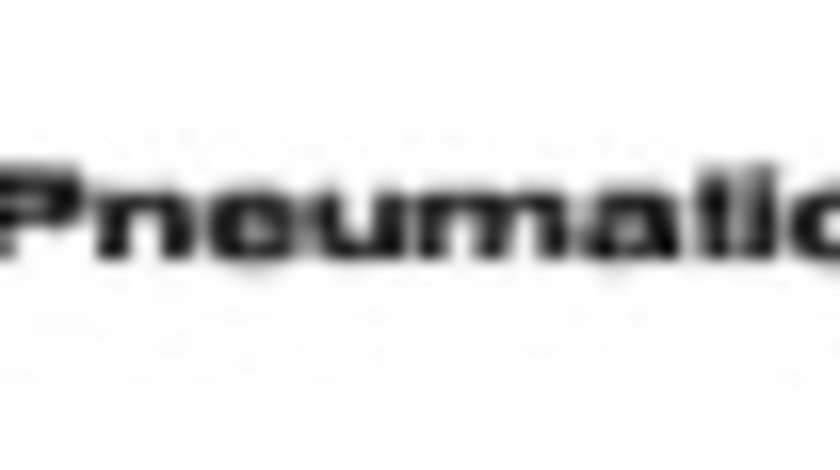 Valva releu DAF 75 PNEUMATICS PN-10541
