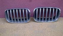 Vand grila BMW X5 X6