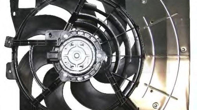Ventilator, radiator PEUGEOT 207 (WA, WC) (2006 - 2016) TYC 805-0011 produs NOU