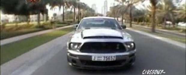 Video: Shelby GT500 cromat in Dubai