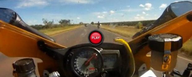 VIDEO: Un motociclist s-a trezit cu un sarpe pe ghidon la 240 kilometri pe ora!
