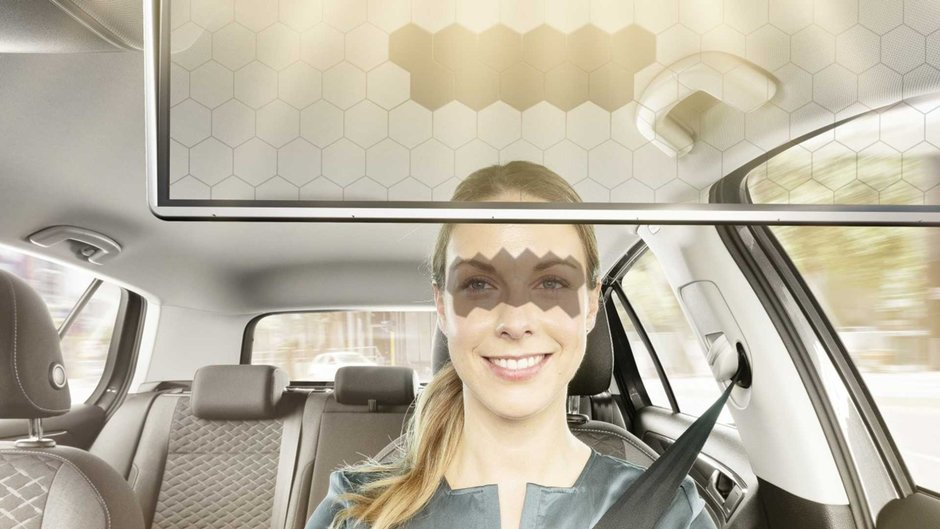 Virtual Visor de la Bosch