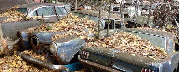 Vrei o masina noua prin Programul Rabla? Tocmai a fost suplimentat cu 30.000 de tichete
