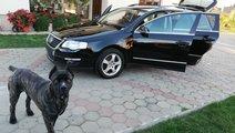 VW Passat 2.0 L 2008